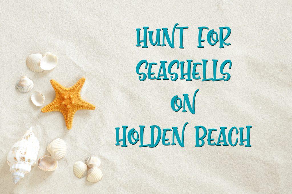 Hunt for Seashells on Holden Beach